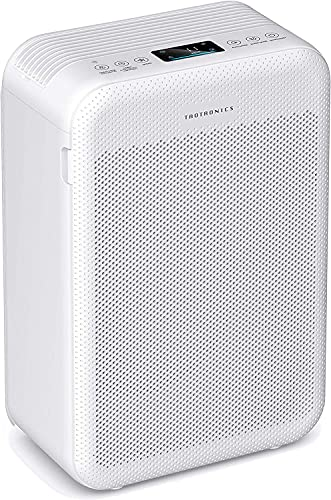 TaoTronics Air Purifier for Home, Large Room Air Cleaner with H13 True HEPA Filter for Allergies, Pets, Dust, Smokers, CADR 384m³/h Energy Star (Available for California)