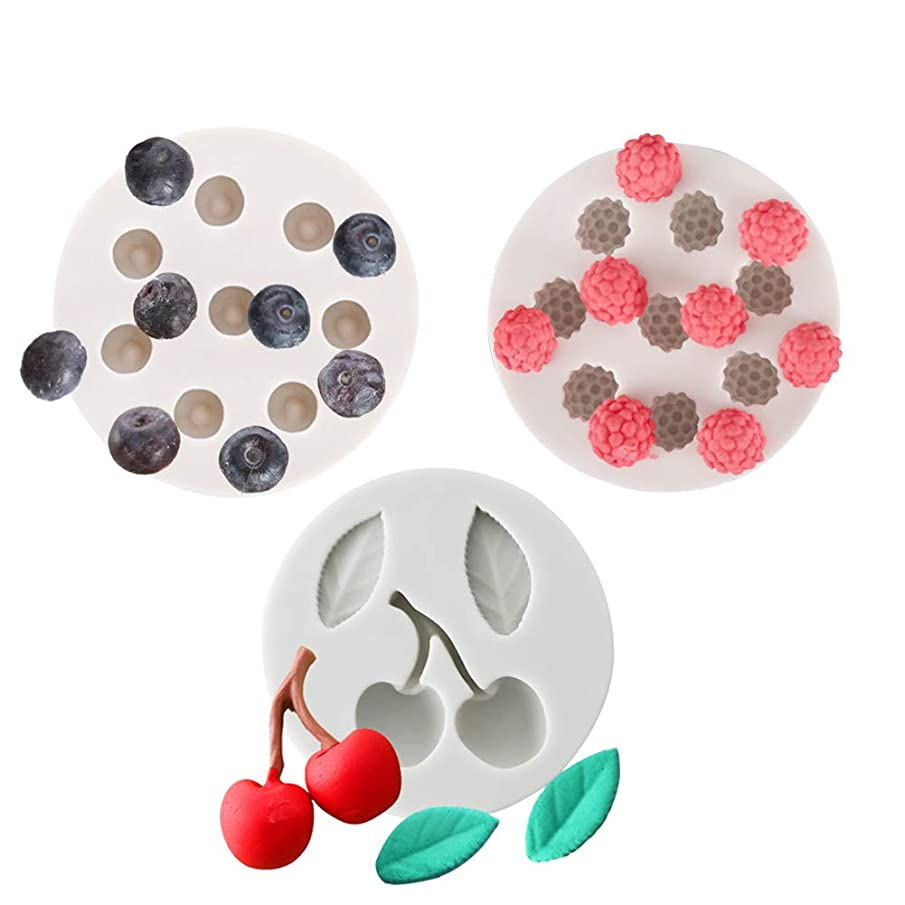 KALAIEN 3pack Blueberry Raspberry Icecube Silicone Mold Cupcakes Topper Decorating Making Molds