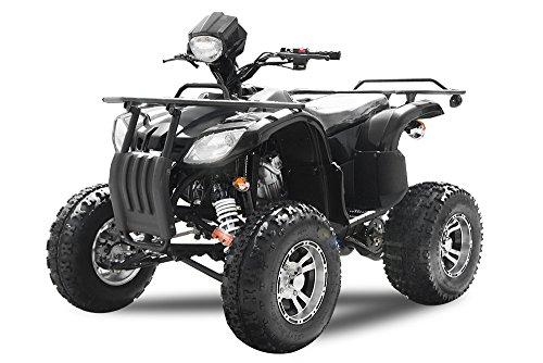 AUFGEBAUT 250cc EGL Farmer mit Straßenzulassung Alu Räder Anhängerkupplung Quad ATV
