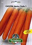 Sementi orticole di qualità l'ortolano in busta termosaldata (160 varietà) (CAROTA NANTES CLODIA 2)