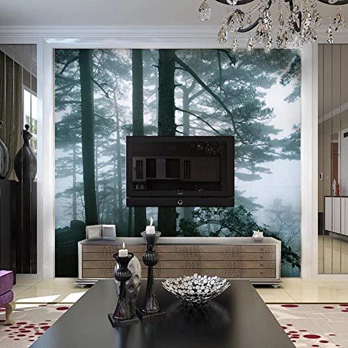 Fotobehang wandschildering, personaliseerbaar, motief: mist, bos, wallpaper, voor woonkamer, sofa, tv 300 * 210cm