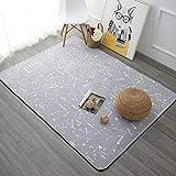 HNFJC lfombra Alfombras para Sala de Estar Alfombras y alfombras de Dormitorio para el hogar Mesa de Centro Alfombra de área Breve Alfombra para niños, Gris Claro, 700 mm x 1400 mm