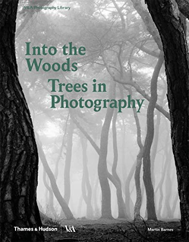 Into the Woods: Trees and Photography