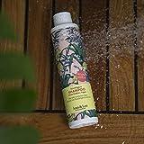 Zoom IMG-1 jean len 2800100105 philosophie shampoo