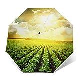 Ombrello Portatile Automatico Antivento, Ombrello Pieghevole Compatto, Folding Umbrella, Baldacchino Rinforzato, Impugnatura Ergonomica, Campo di patate dell'azienda agricola sotto