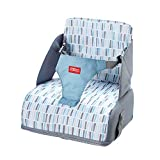 Nuby Travel Booster Seat