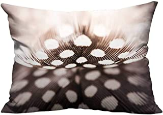 YouXianHome Home DecorCushion Covers Abstract Composition with Guinea Hen Feather Comfortable and Breathable(Double-Sided Printing) 11x19.5 inch