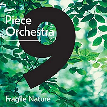 9-Piece Orchestra: Tales of History