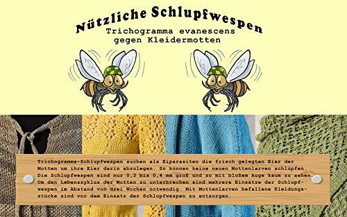 Vgo... Schlupfwespen 4 Kärtchen a 2000 Stück zur Bekämpfung von Kleidermotten 6 Lieferungen Total = 48000 Stück