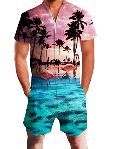 Idgreatim Herren Jumpsuit Herren Overall Männer Strampler hawaiianischer Overall Bust Pocket Kurzarm 3D Grafik Strampler Overalls EIN Stück Outfits M