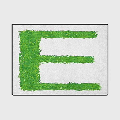 Letter E Soft Indoor Large Modern Area Rugs Woodland Uppercase E Organic Blooming Words Alphabet Initials Fresh Style Engagement Gifts for Women Green Multicolor 6.5 x 8 Ft