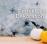 TK Gruppe Timo Klingler 20x Spinnen Set zu Halloween als Grusel Deko & Dekoration für Haus, Tisch & Garten - Spinnendeko - 5