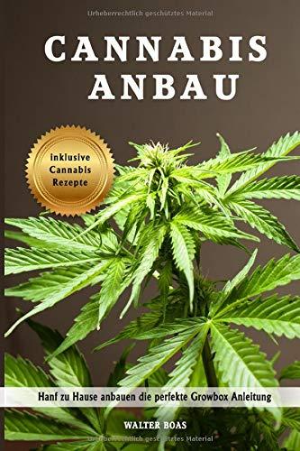 Cannabis Anbau Hanf zu Hause anbauen die perfekte Growbox