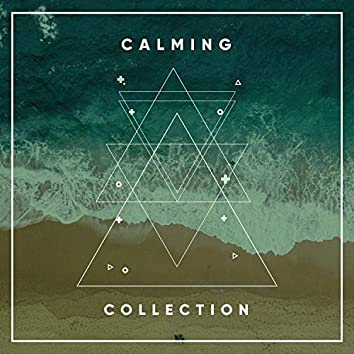 # 1 Album: Calming Collection