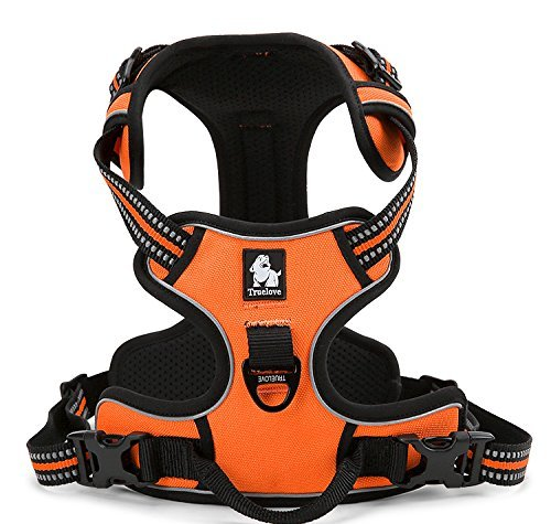 EXPAWLORER Best No-Pull Dog Harness Reflective Outdoor Adventure Pet Vest with Handle. 3 Stylish Colors and 5 Sizes.