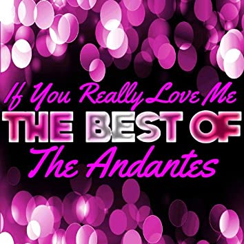 If You Really Love Me - The Best of the Andantes