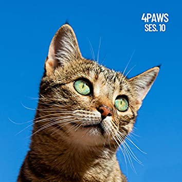 4 Paws, Sleeping Music for Dogs and Cats Session 10