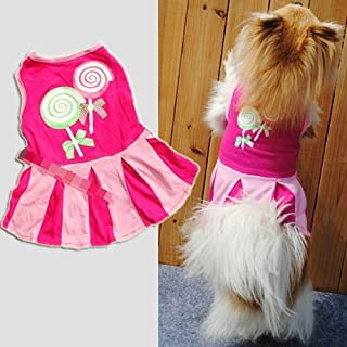 Best dog cheerleader pattern Reviews