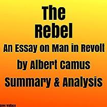 Essay on man analysis