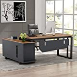 Tribesigns L-Shaped Desk, 55 Inch Executive Office Desk with File Cabinet, Modern Computer Gaming Desk Workstations for Home Office