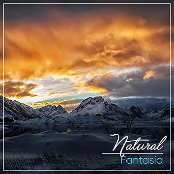 # 1 Album: Natural Fantasía