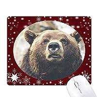 陸生生物が野生動物のクマ オフィス用雪ゴムマウスパッド