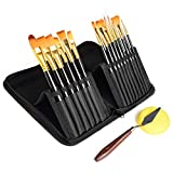 Rhodesy Acrylic Paint Brush Set of 15 Different Shapes for Acrylic...