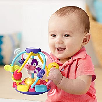 VTech Baby Lil  Critters Shake and Wobble Busy Ball Amazon Exclusive Purple