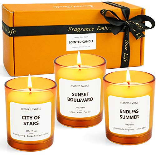 LA BELLEFÉE Scented Candles Soy Wax Candles of Sunset Boulevard, Endless Summer and City of Stars, for Friends, Families, Birthdays, Weddings, Christmas Candle Set