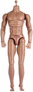 ZYAQ 1/6 Scale Action Figure Male Muscular Body Toys Doll fits TTM18 TTM19 Hot Toys