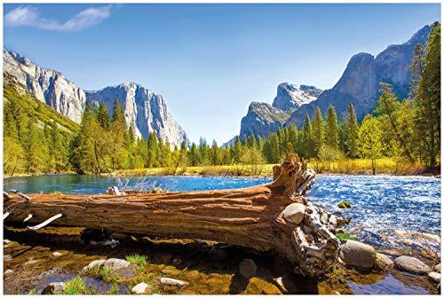 Wallario Glasbild Baumstamm im Fluss zwischen Bergen und Wäldern - 60 x 90 cm in Premium-Qualität: Brillante Farben, freischwebende Optik