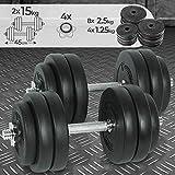 Physionics Juego de 2 Mancuernas de Fitness de 30 kg (2 x 15 kg) Pesas Musculación Discos y Barras