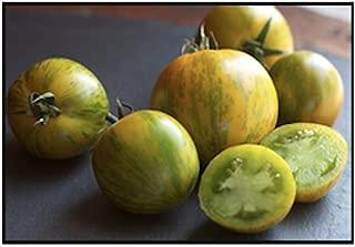 Green Zebra Tomato Seeds, 200+ Premium Heirloom Seeds, Yummy Delicious! Fun Addition to Your Home Garden!, (Isla's Garden Seeds), Non GMO Organic, 90% Germination Rates, Highest Quality Seeds