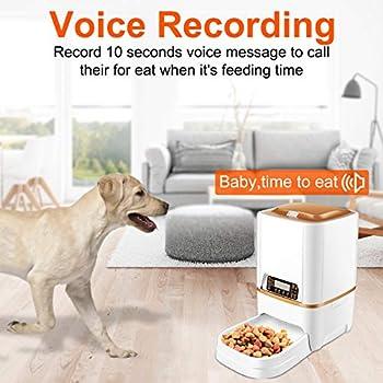 Sailnovo Distributeur Automatique de Nourriture pour Animaux Distributeurs de Nourriture pour Chiens et Chats avec Enregistrement Vocal Programmable
