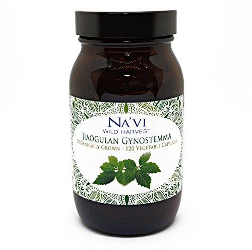 Bottle of 120 Premium Organic Jiaogulan GynostemmaVeggie Capsules