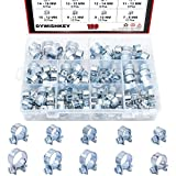 DYWISHKEY 100Pcs 10 Sizes Zinc Plated Mini Fuel Injection Line Style Hose Clamp Assortment Kit, Perfect for Automotive, Agriculture, Plant & Construction