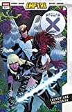 Dawn of X Vol. 13 (Edition collector)