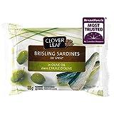 Clover Leaf Brisling Sardines in Olive Oil - 106g, 12 Count - Canned
