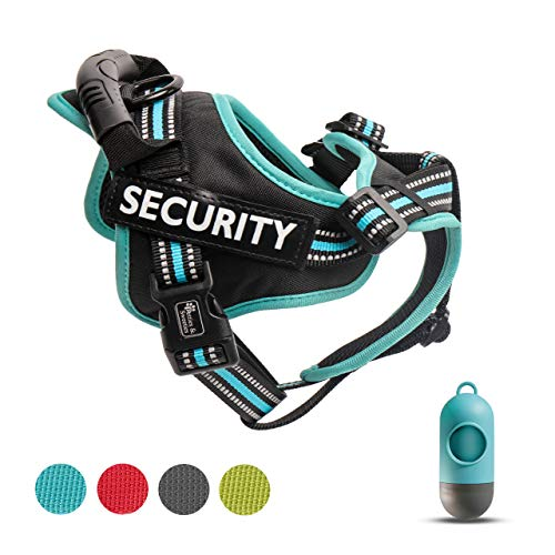 Petties&Sweeties No Pull Dog Harness, Reflective Adjustable Soft Padded Vest Unique Colors ,with a Easy Control Training Handle for Small Medium Large Dog Cat Pet ,with Poop Bags Blue