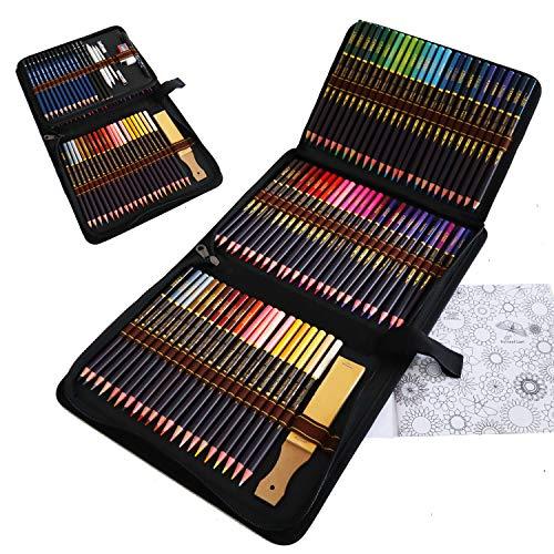Lapices de Colores para Adultos, 96 Pieza Lapices de Dibujo Artístico del Artista y Bosquejo Carbón Grafito Sticks, Lápices de Madera, para Artista Principiante Niños