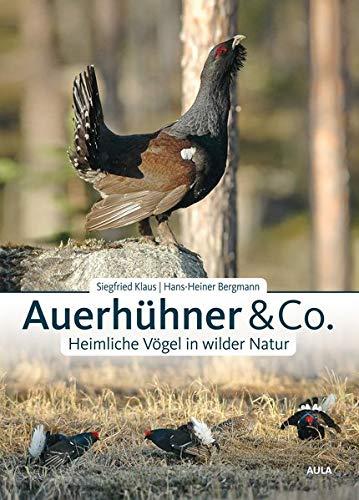 Auerhühner & Co.: Heimliche Vögel in wilder Natur