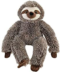 35cm approx in height (top of head to bottom toes) Soft stuffed sloth Cuddly and huggable Kandy Toys Brand Suitable for ages 18 months +
