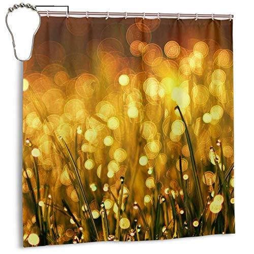 PQASDC Cortina de ducha eficiente de secado rápido para baño, cortina de ducha decorativa de 182 x 182 cm, juego de cortina con 12 ganchos, decoración para cuarto de baño, hierba prado, dorado