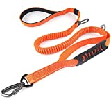 4-6FT Bungee Dog Leash for Walking Running Training,Heavy Duty Dog Leash with Highly Reflective Threads and Buffer for Medium and Large Dogs,Durable Car Seat Belt (Orange)