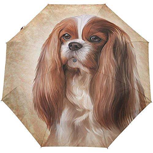 Weinlese-Netter Hundewelpen-Tierauto-geöffneter naher Sun-Regen-Regenschirm