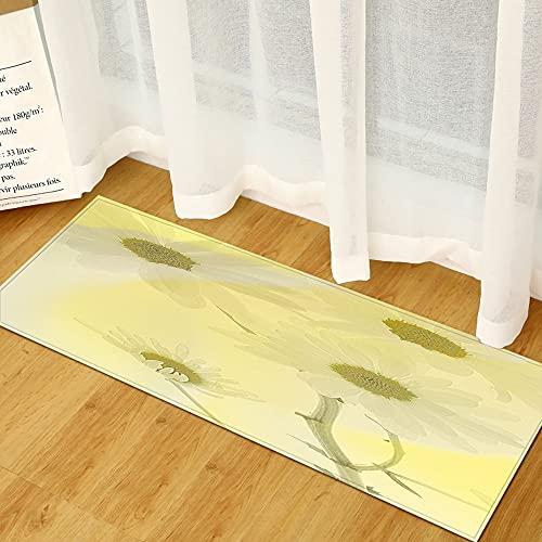 OPLJ Impresión 3D decoración del hogar Felpudo de Bienvenida, Felpudo de la Sala de Estar del Dormitorio, Alfombra Lavable Antideslizante de baño y Cocina A5 50x160cm