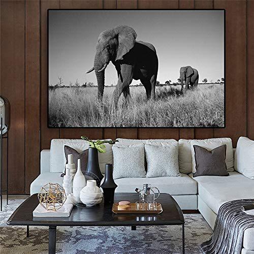 Schwarzweiss-afrikanische Elefanten-Leinwandmalerei-Wildtierplakate und druckt moderne Wandkunstbild-Wohnzimmer rahmenloses dekoratives Gemälde A55 40x60cm