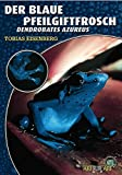Der Blaue Pfeilgiftfrosch: Denrdobates azureus: Dendrobates azureus (Art für Art / Terraristik)