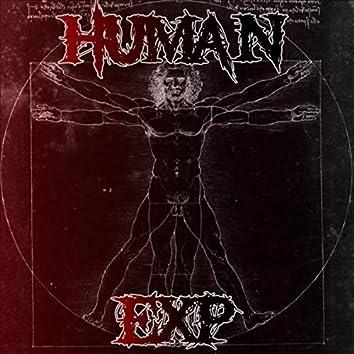 HUMAN EXP