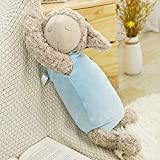 YYhkeby Peluche de pelota de oveja gorda con forma de bola de peluche suave para dormir, cojín de cordero, cojín de cordero, regalo de cumpleaños de 60 cm, Jialele (color: D 60 cm)